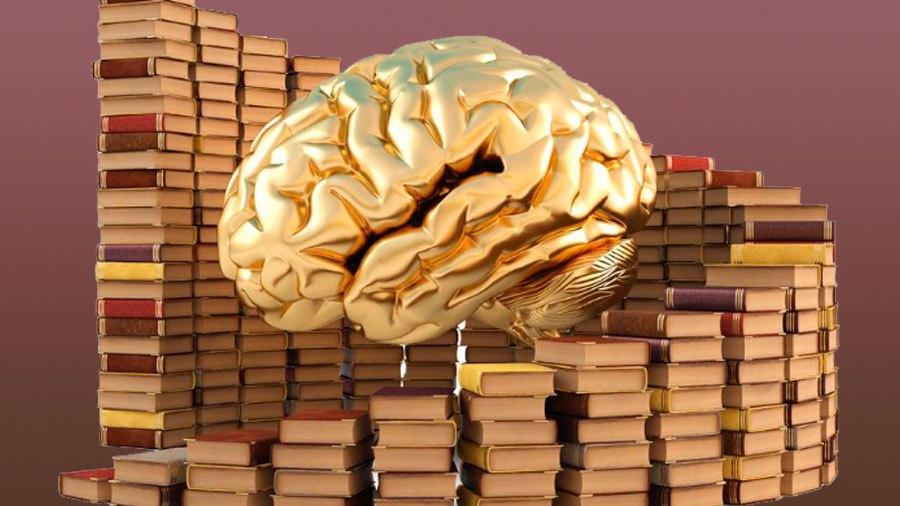 Картинки мозга и денег