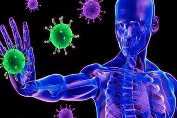 Prepárese para fortalecer su sistema inmunológico durante la cuarentena